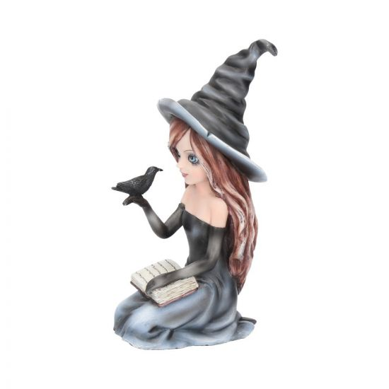 Regan Witch Figurine with Book and Raven (15cm)