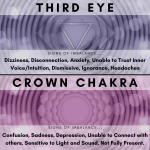 Chakra Clearing Reiki Session - Distance (30-40 mins)