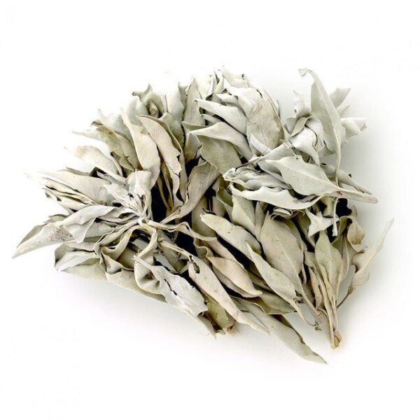 California white sage clusters - 50g bag