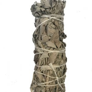 White sage and Lavender 4 inch