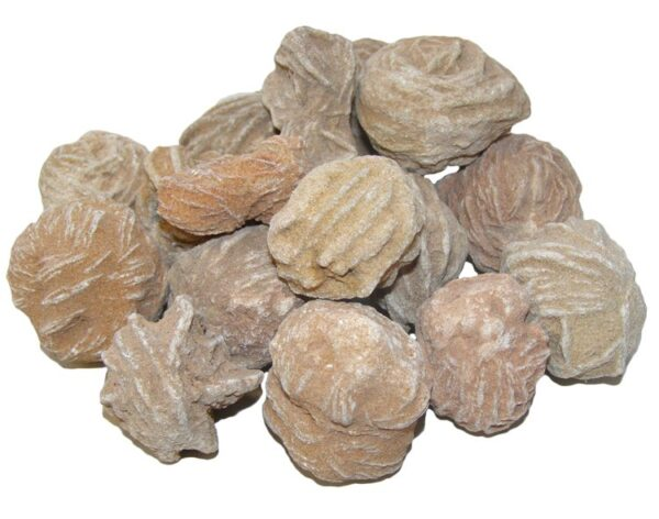 Desert Rose Selenite (Calming, Purification, Protection, Connection)