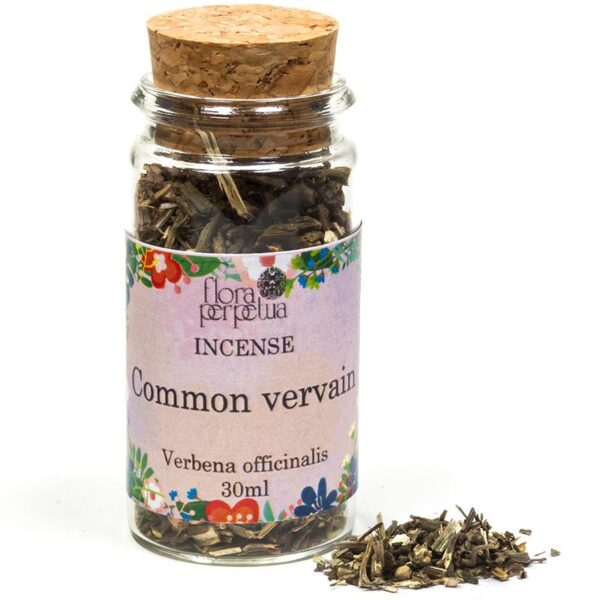 Vervain Herb Jar 30ml (Protection